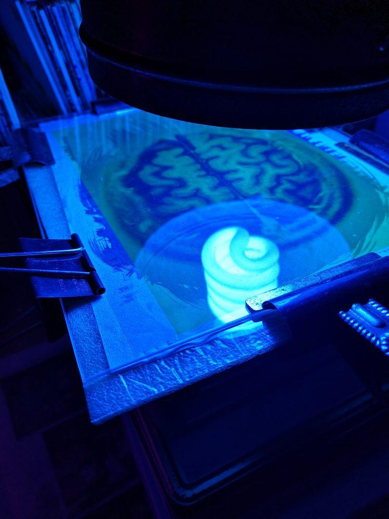 alternative photographic process/ cyanotype print/ intaglio photopolymer etching/ art print/ exposure unit