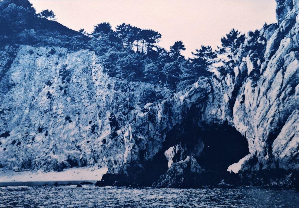 alternative photographic process/ cyanotype print/ art print
