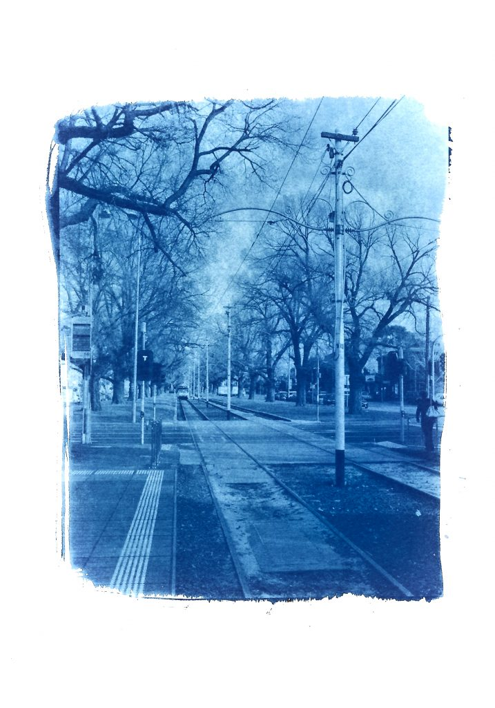 Cyanotype print of a section of Melbournes famous tramway