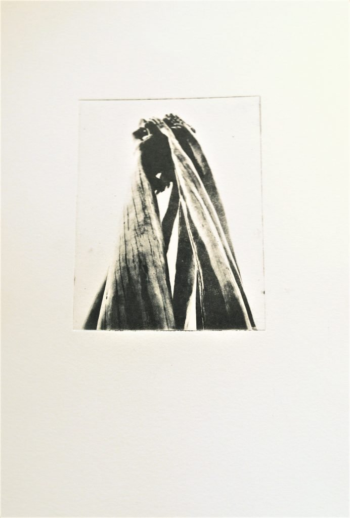 Intaglio photo etching of a wooden sculpture