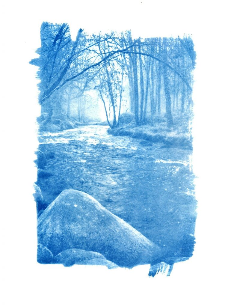 Cyanotype print of a river in Brittany