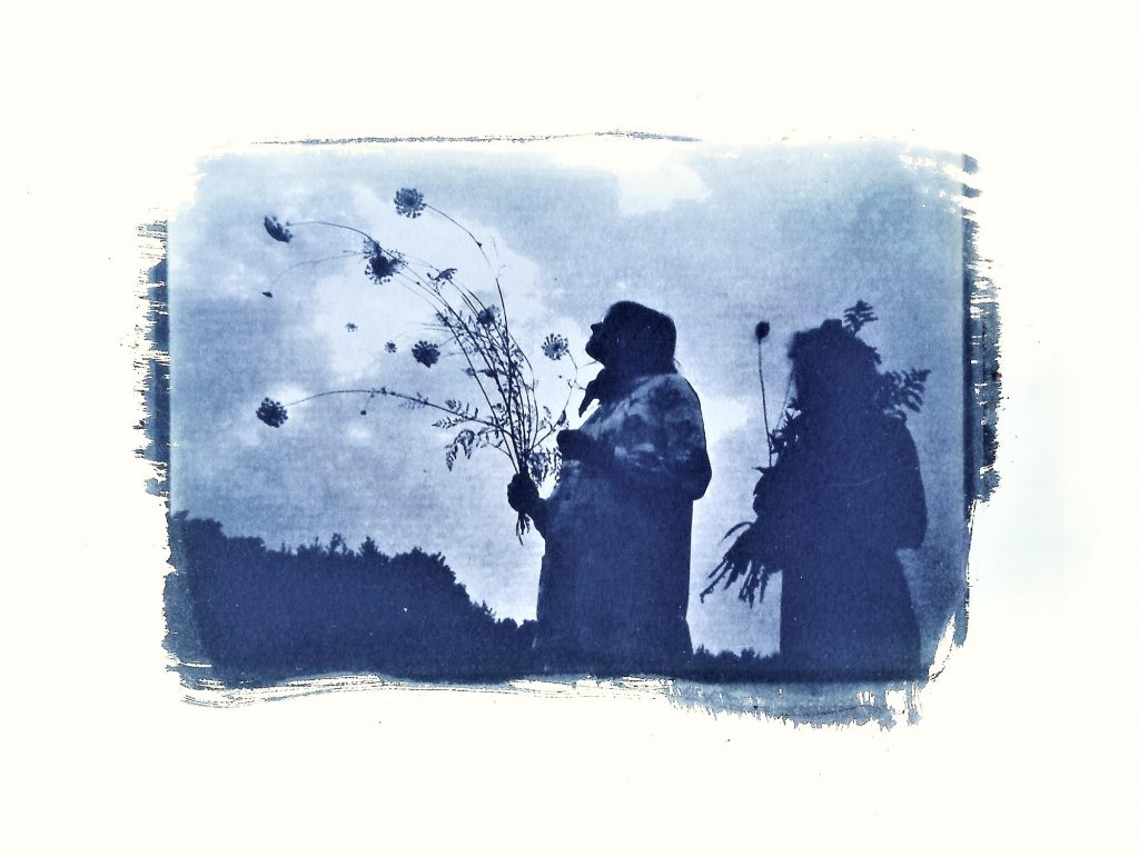 Cyanotype a walk in the country