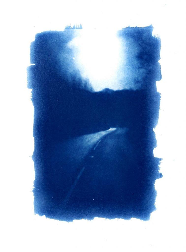 alternative photographic process/ cyanotype print/ art print/